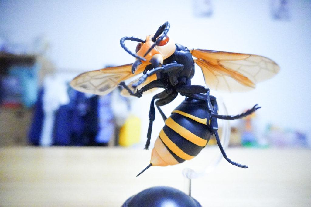 大スズメバチ