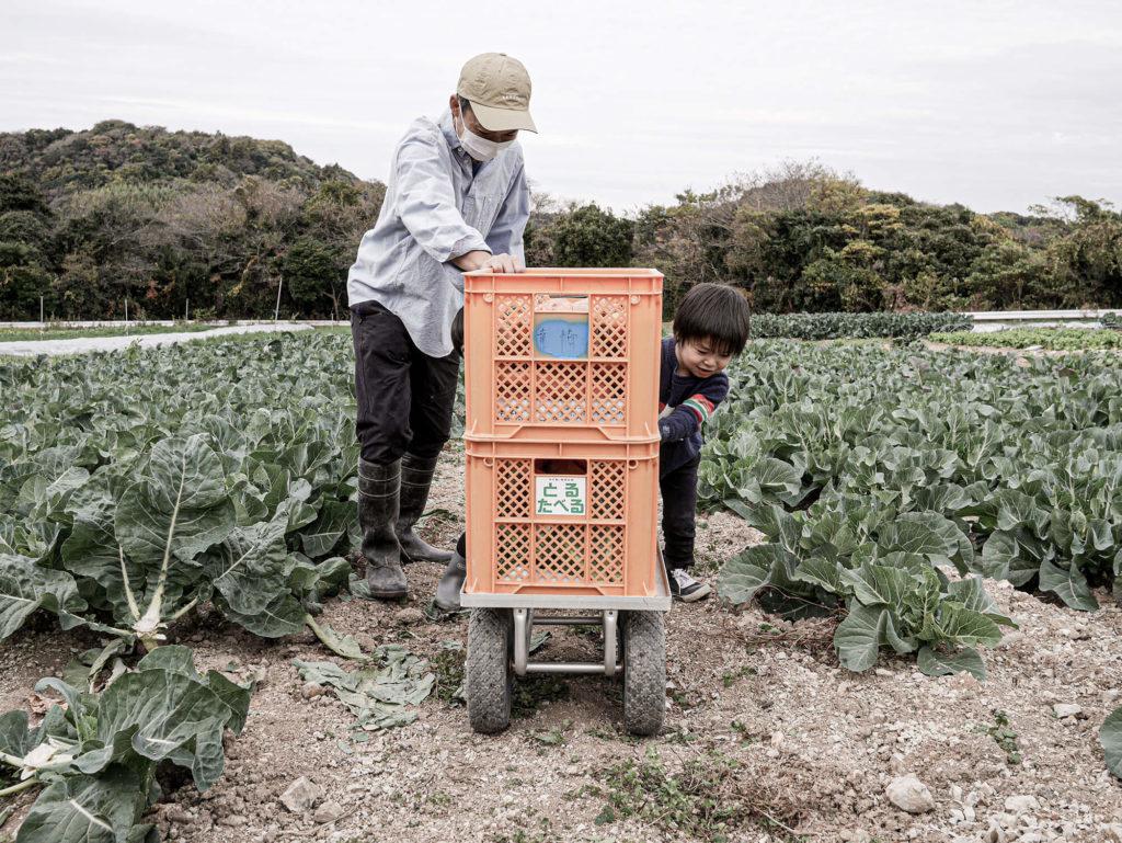 農家さんのお手伝いをする子供たち