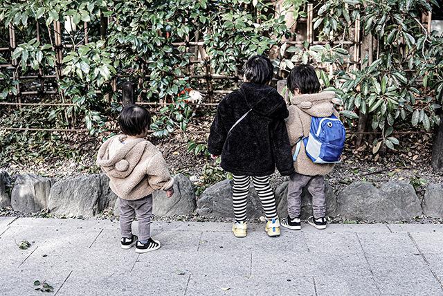 にわとりと遊ぶ子供たち